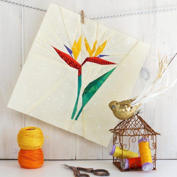 Joe June Mae Bird of Paradise Flower